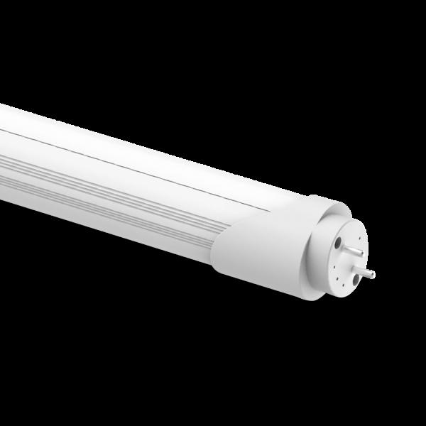 Tube 4Ft BC 12W
